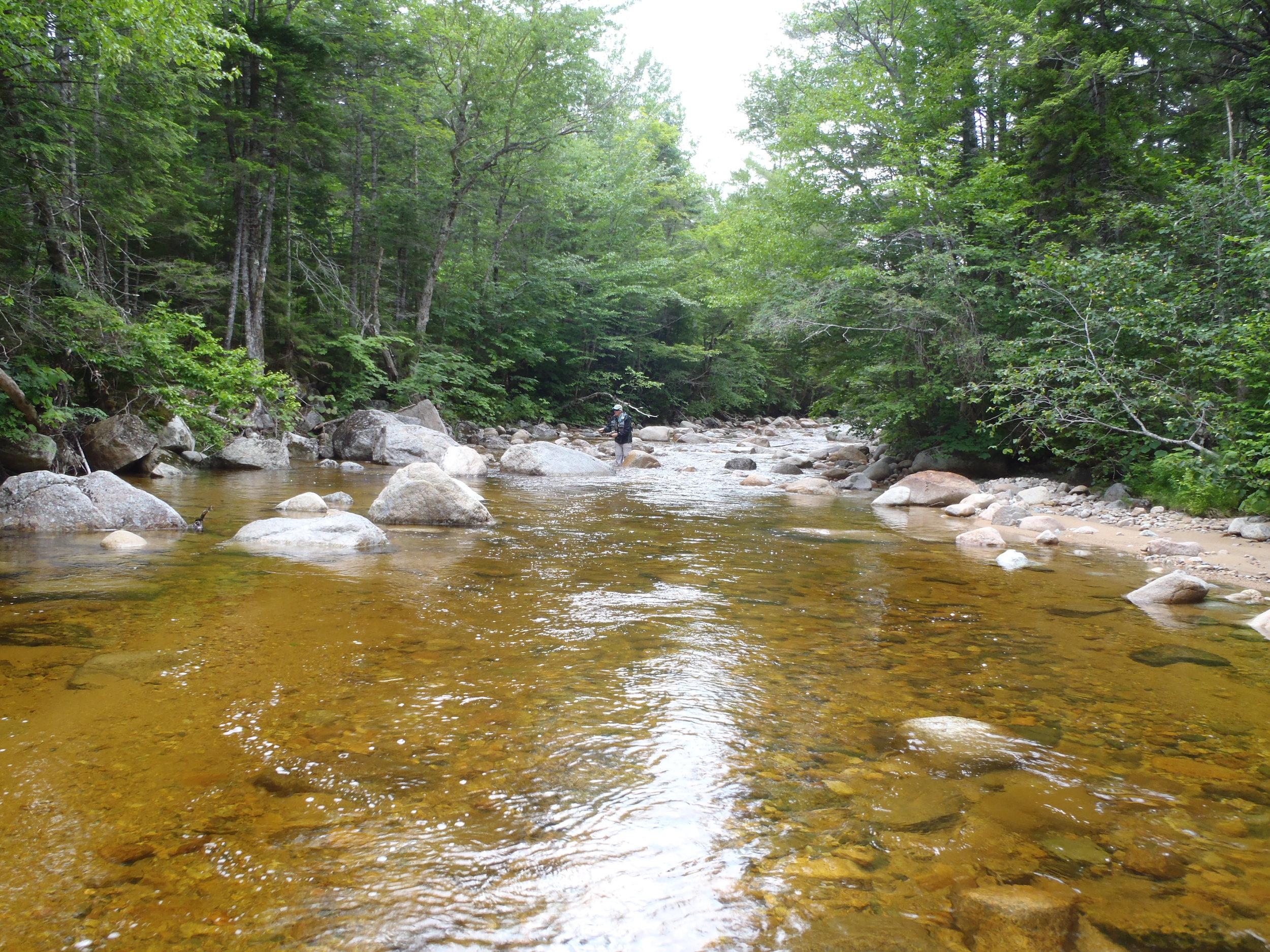 The upper Ammonoosuc River. (Bob Mallard)