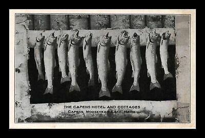 Dr-Jim-Stamps-Us-Fish-Capens-Hotel-Cottages.jpg