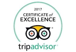 TripAdvisor COE 2017