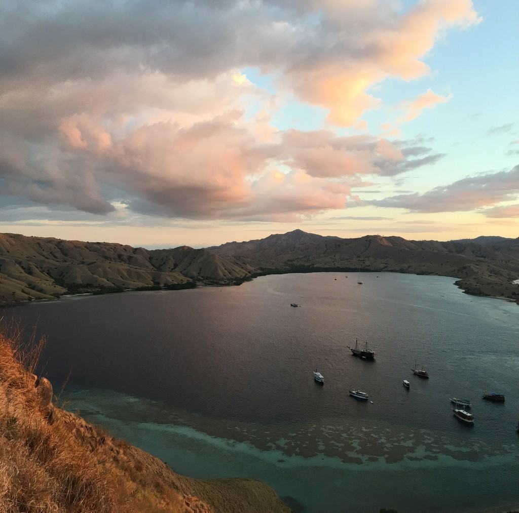 Photos from my liveaboard diving in the World Heritage Site, Komodo National Park