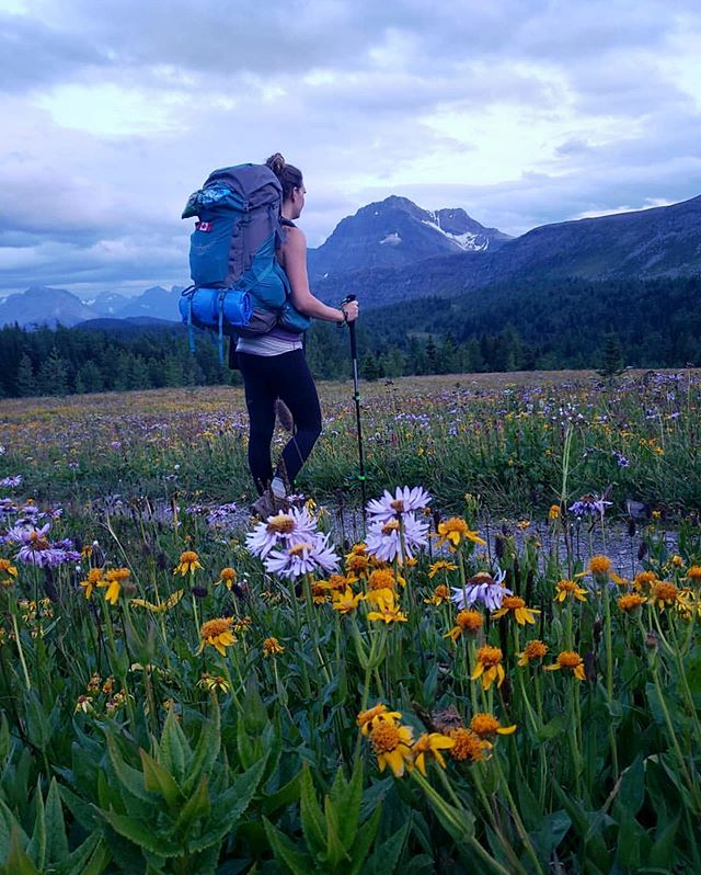 Something we've noticed lately is the variety of hiking pole usage on trails. Some individuals swear by them and some never use them. What is your opinion? Do you use hiking poles? • One benefit we really notice is coming down from a steep trek. The poles massively reduce the work our knees have to do. Share your thoughts below! 👇 • 📸: @amber.yanitski