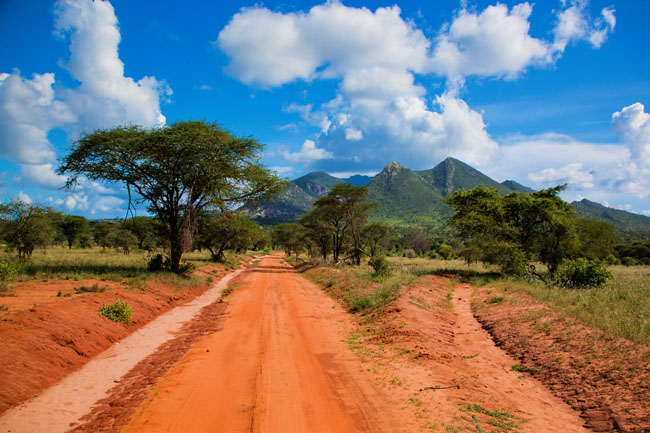 africa-nature.jpg