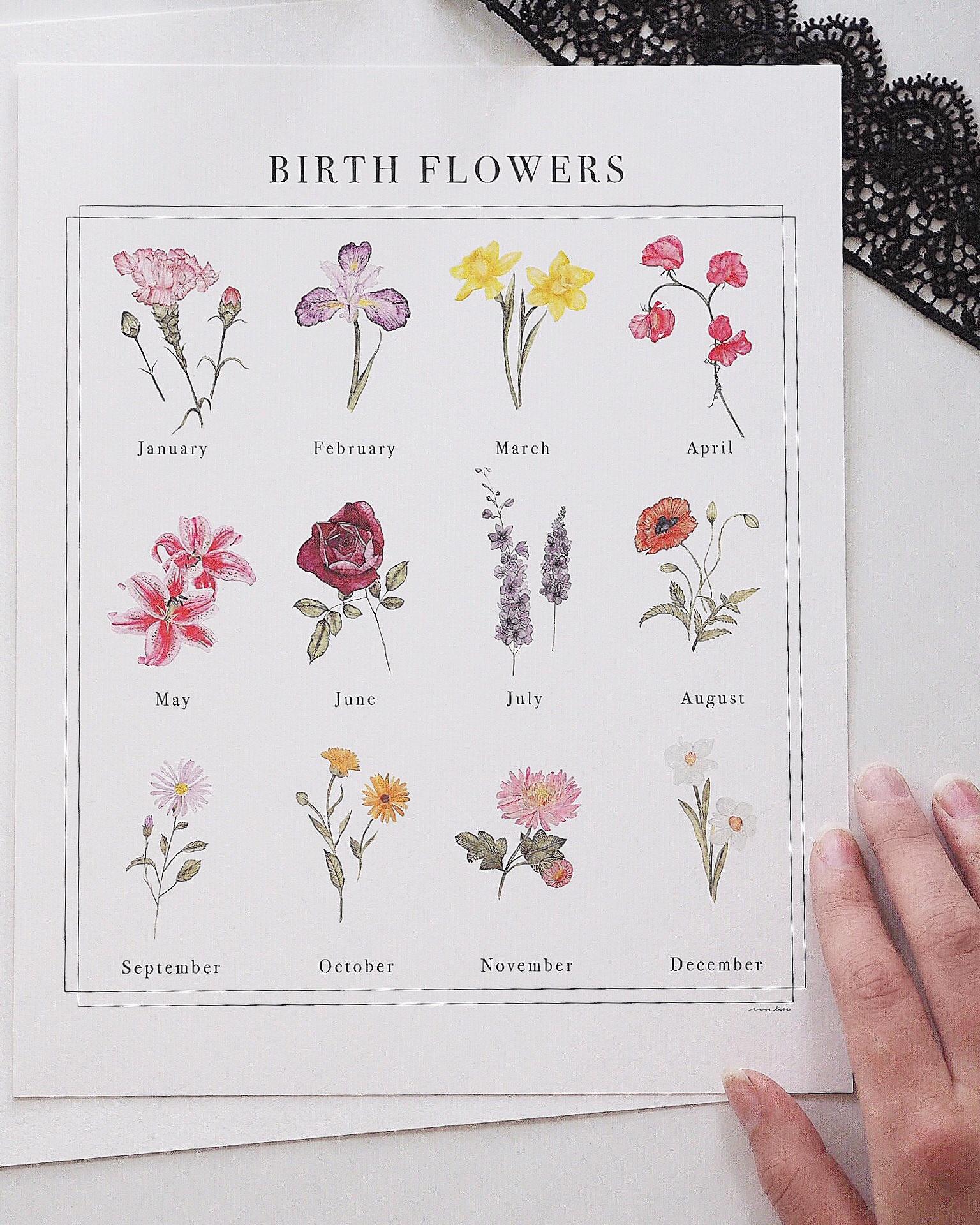 Birth Flowers — ANNA LIISA MOSS