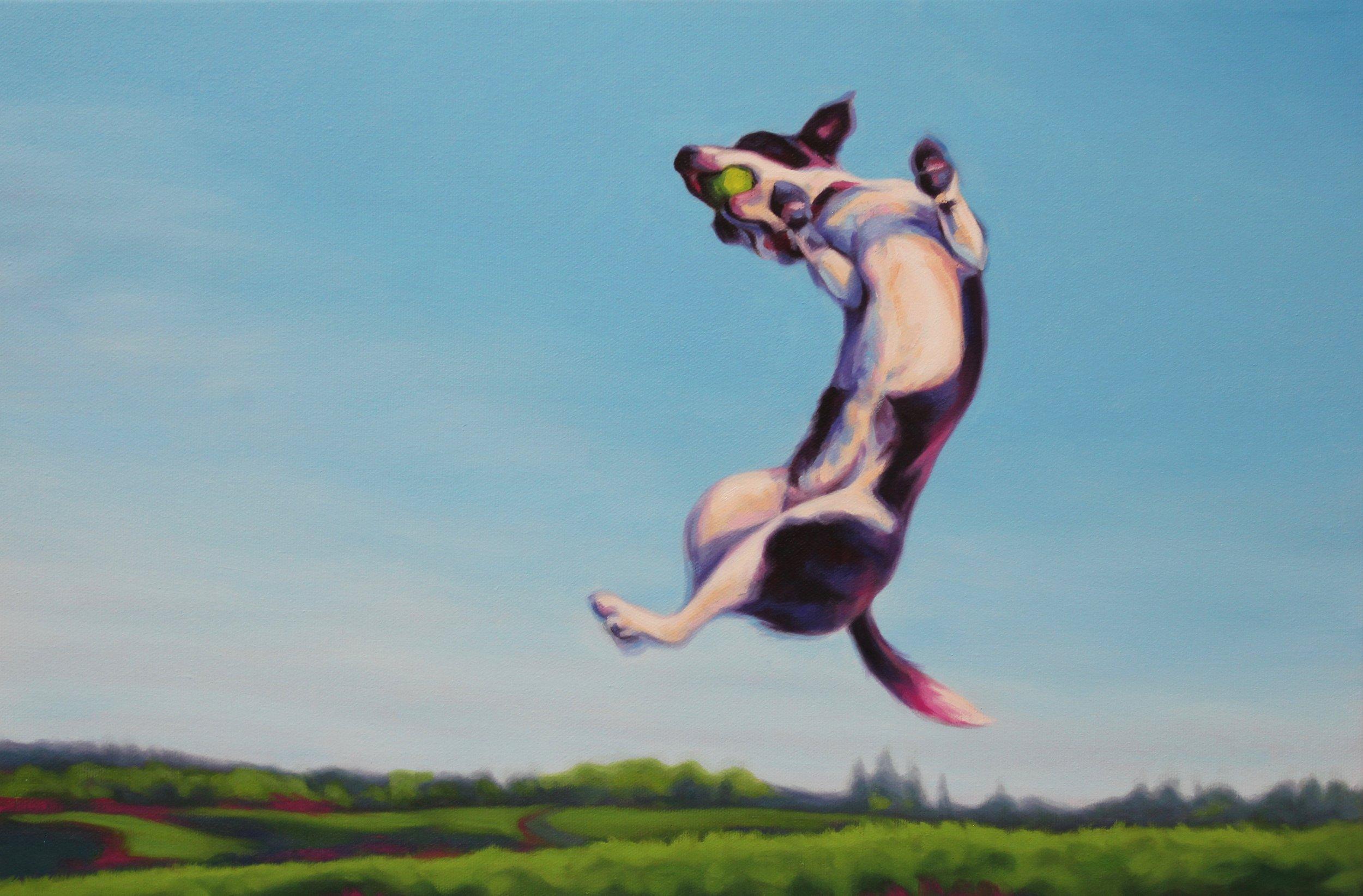 Flying Fonzarelli.jpg