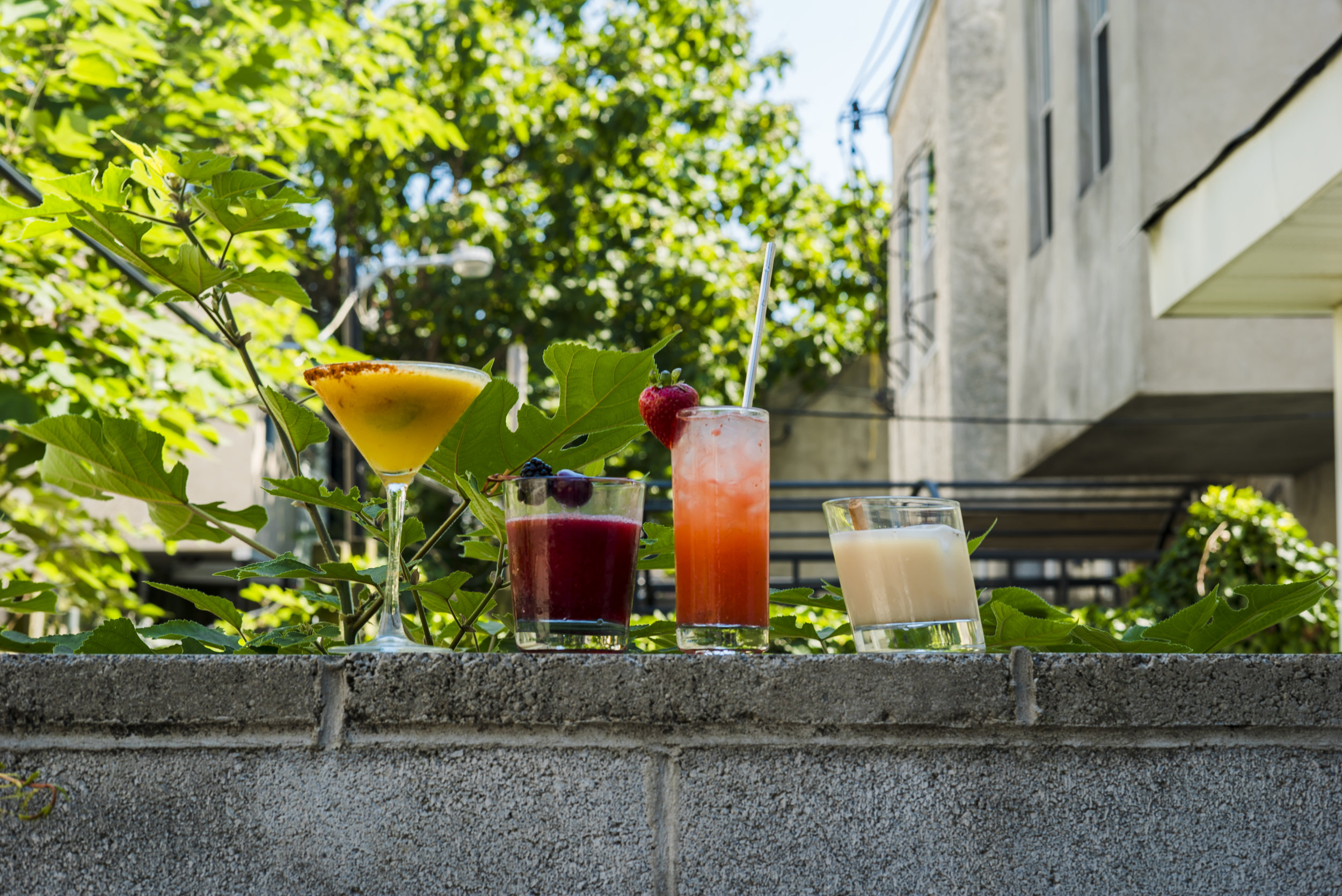 Cocktails and Dreams_0005_DSC09149.jpg