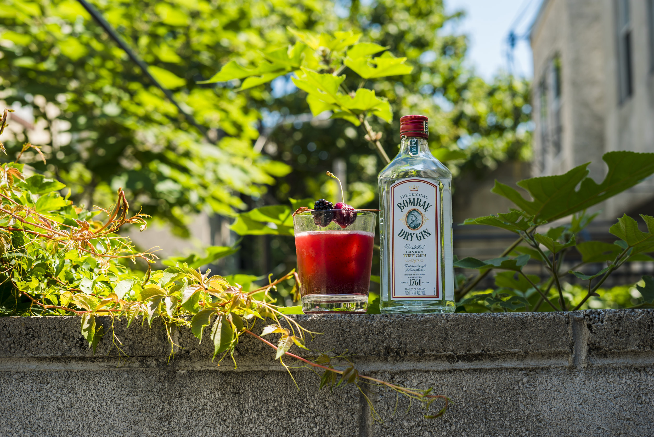 Cocktails and Dreams_0003_DSC09108.jpg