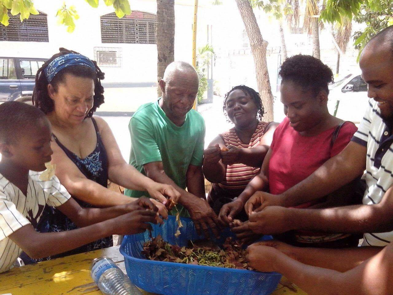 Composting lesson with teachers in Haiti