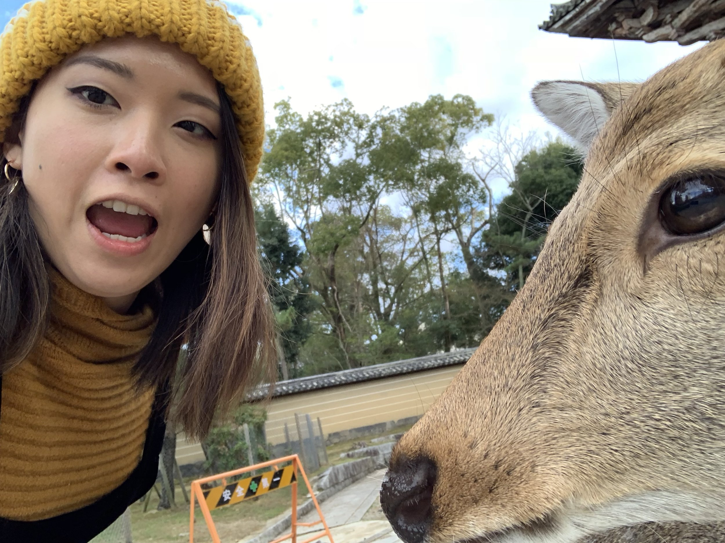 A little SELFIE with the Nara deer hahahaha