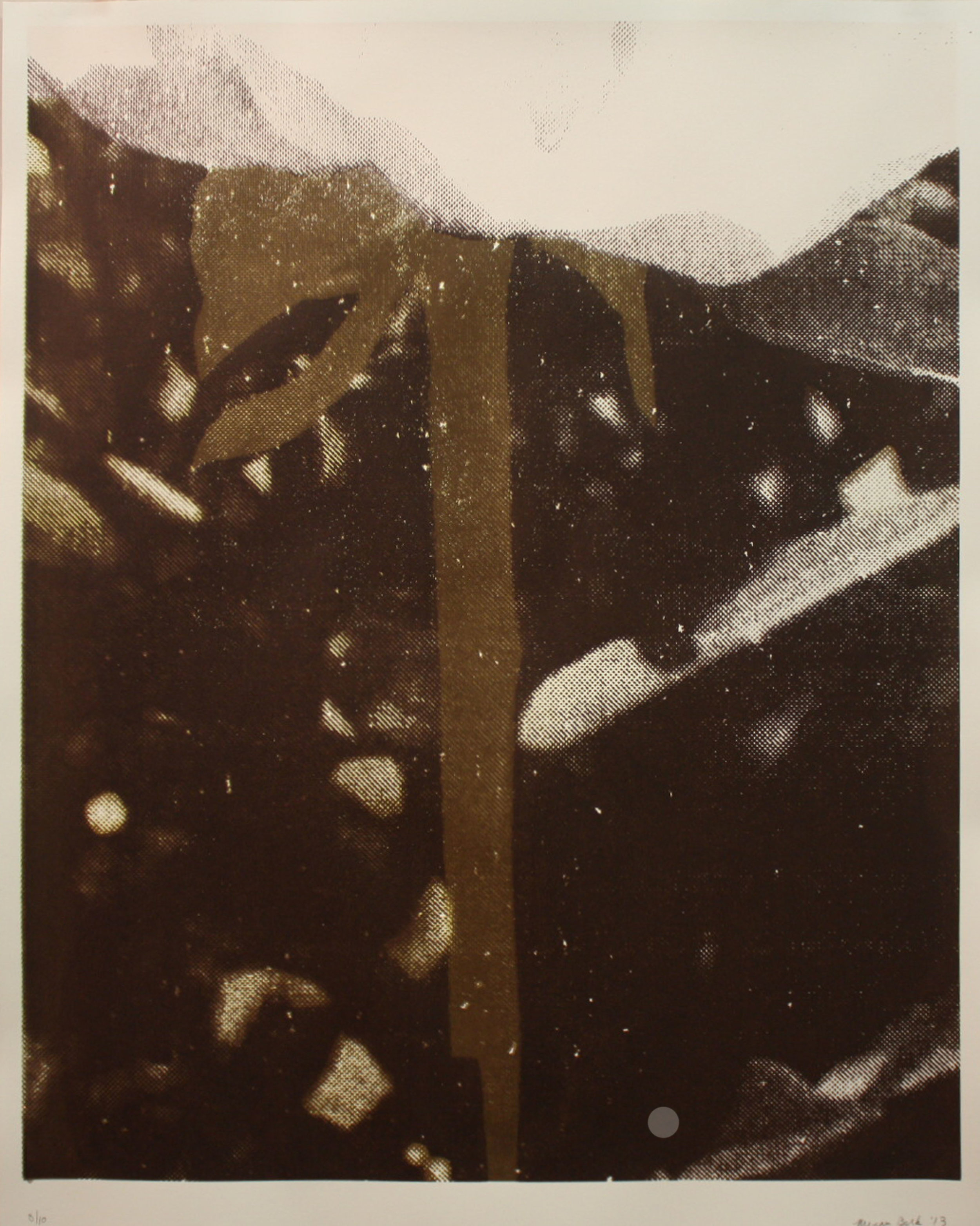 Rose Garden #1, silkscreen, 2013