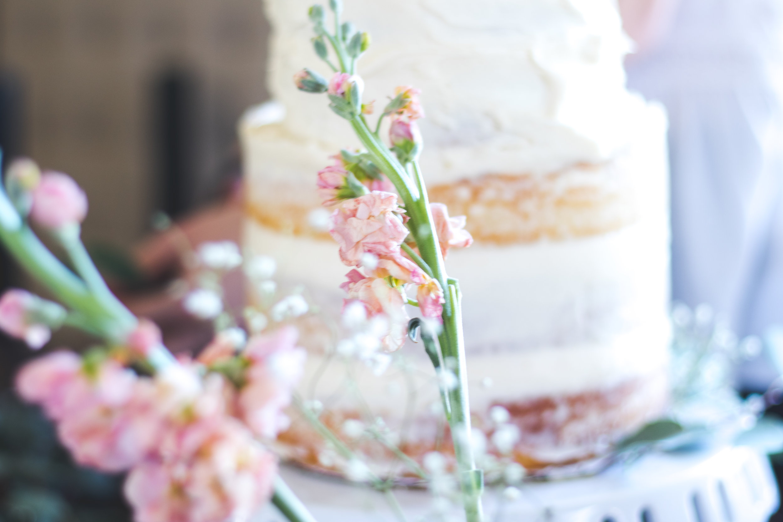 - Mary Michael's love for the small and simple details of a celebration are visibly seen in her work. Her cakes are simple and elegant with whimsical strokes of frosting laced with wild botanicals.
