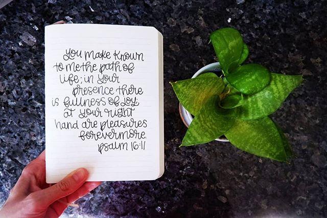 One of my favorites. ☺️ . . . . .  #wherethewillowsgrow #createdtoday #timeforcreativesouls #thehungrycreatives #artistherapy #createdtocreate #creativetherapy #arttherapy #womenwhomake #creativelife #handlettering #handletteringdaily #letteringcommunity #letteringartist #handletterer #loveofletters #communityofchristiancreatives #christiancreative #goodnewsfeed #rootedartists #goodfruitcreatives #illustratedfaith #butfirstjesus #instagramforchrist #scripturelettering #ipreview via @preview.app