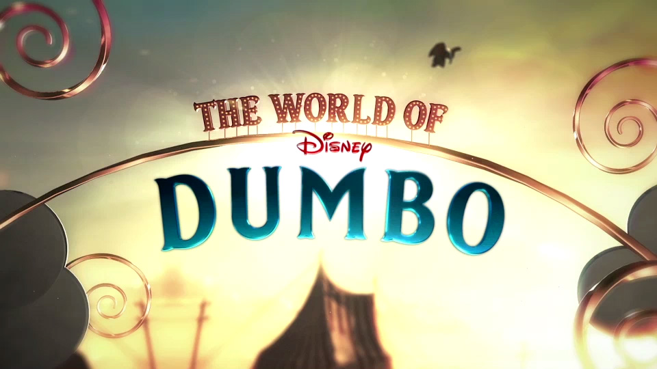 the World of dumbo    VIEW PROJECT