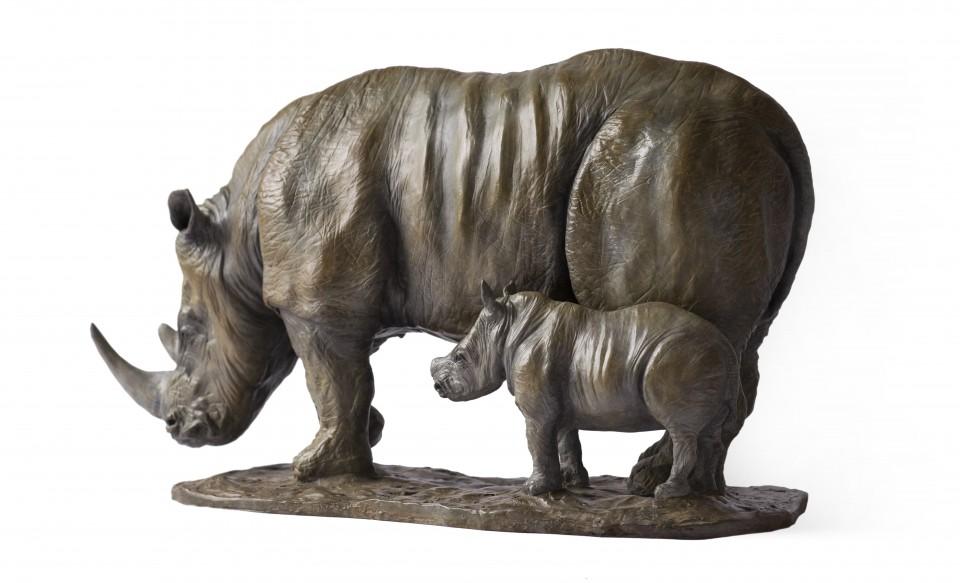 Rhino4-White-960x583.jpg