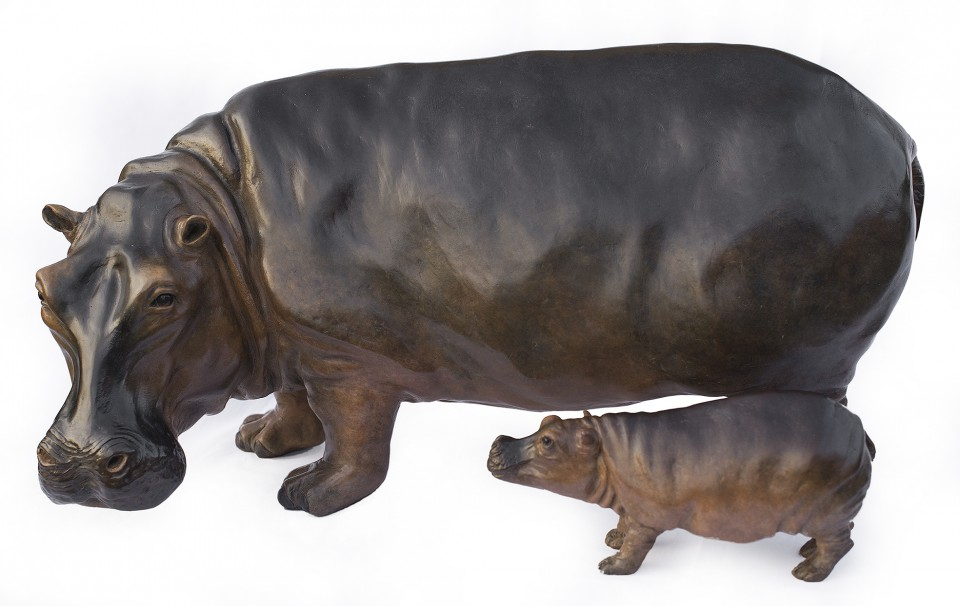 Hippo11-960x606.jpg