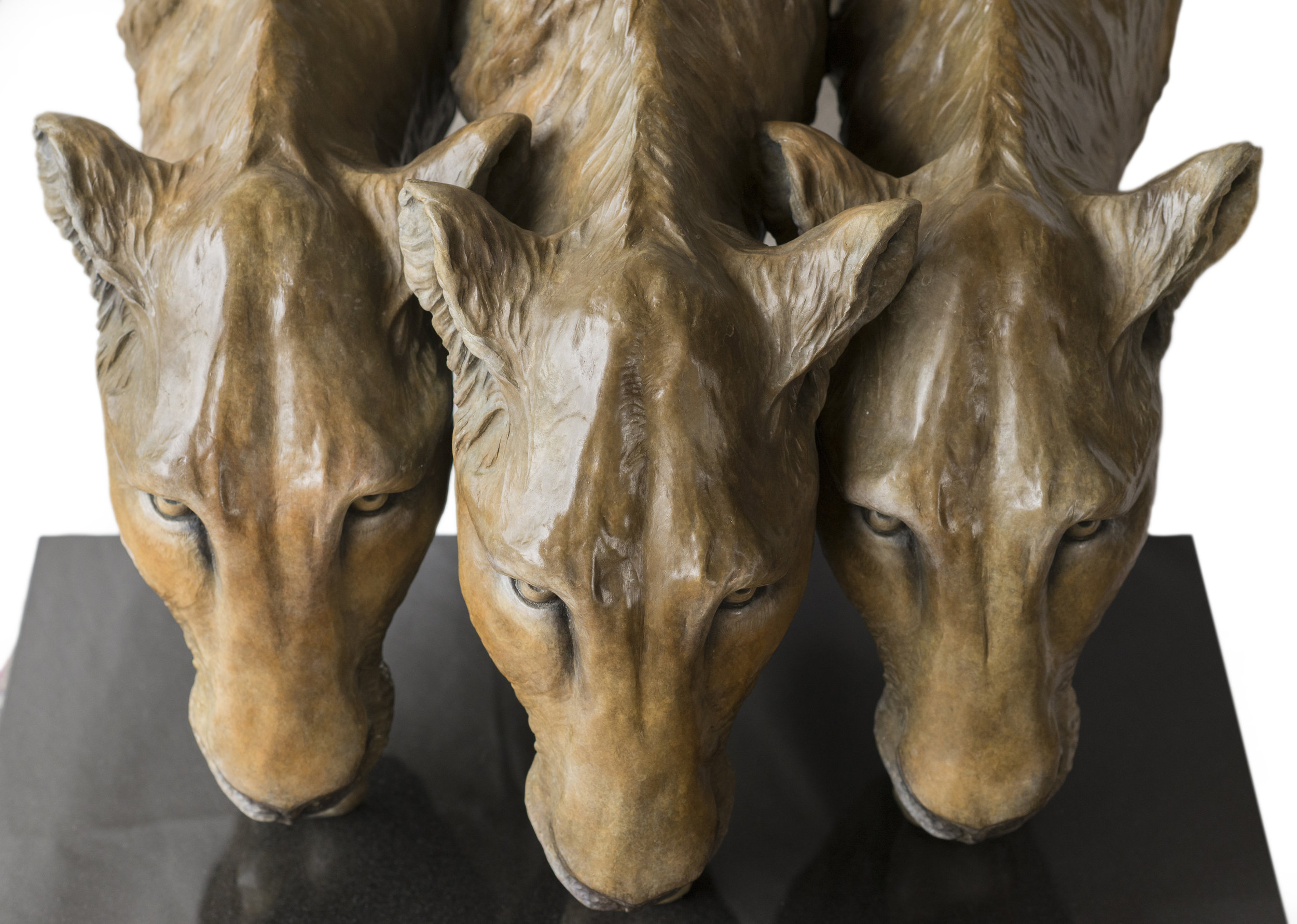 Trio of Lions 5.jpg