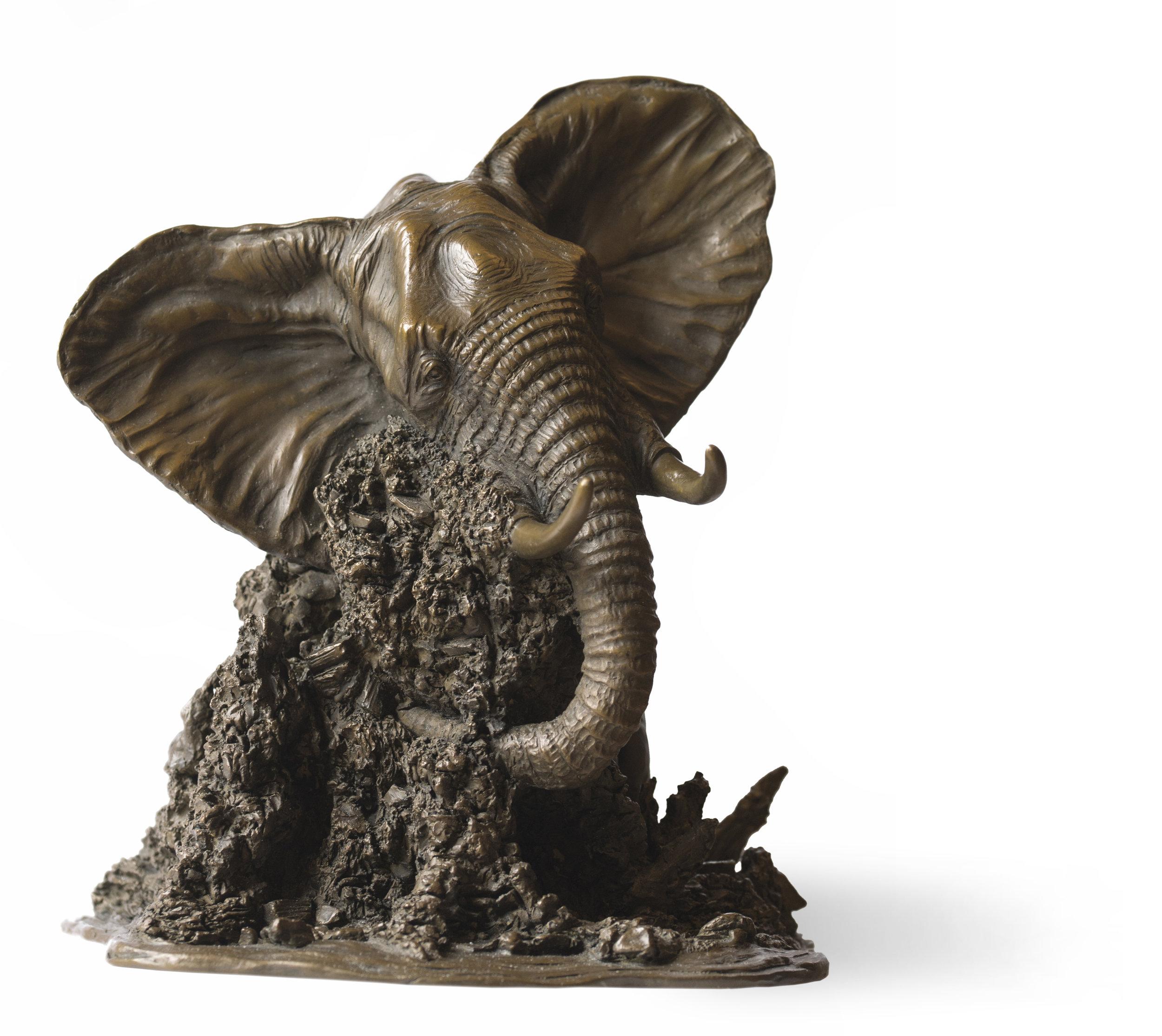 Bull Elephant Study Rosamond Lloyd Sculpture