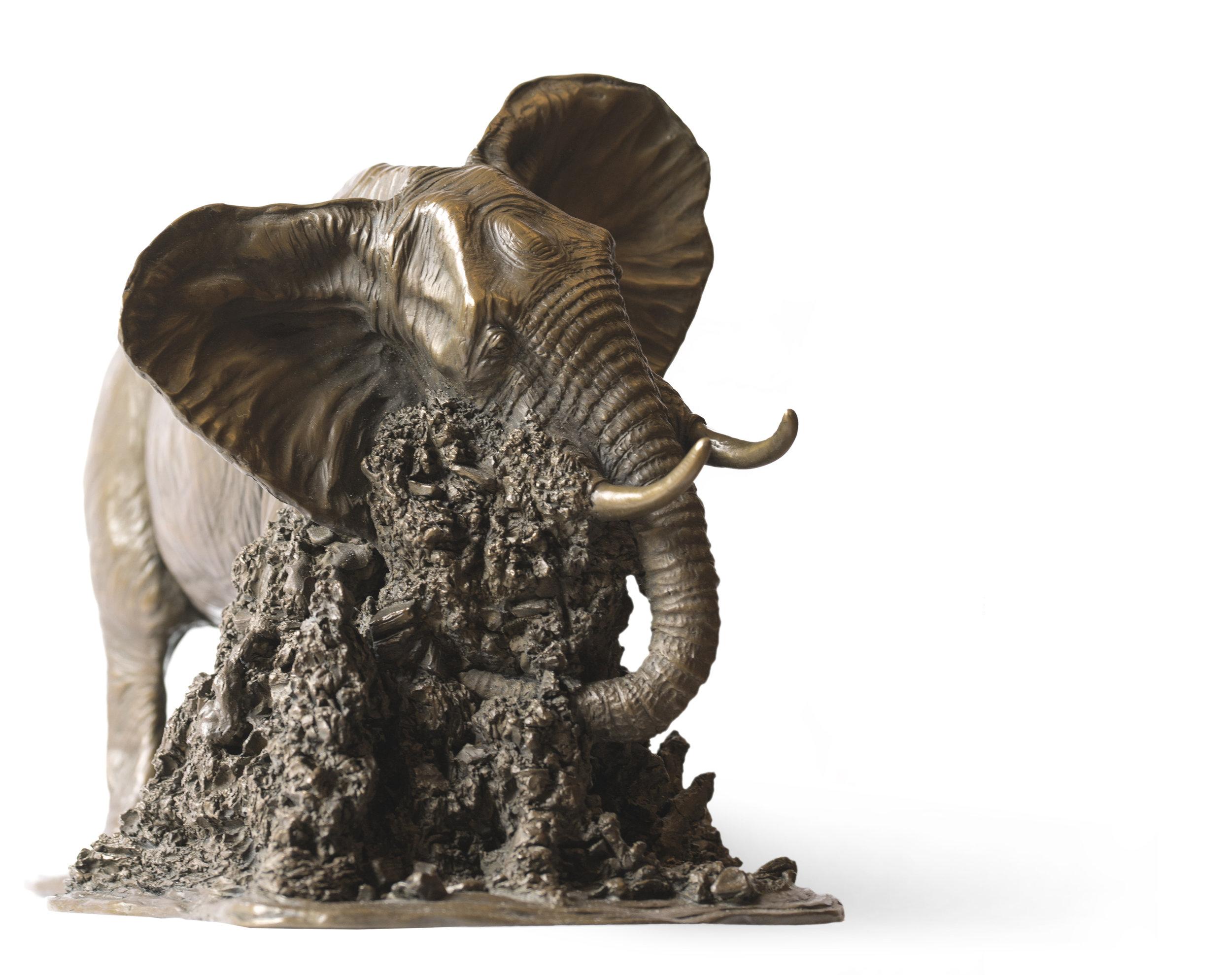 Elephant Bull3.jpg