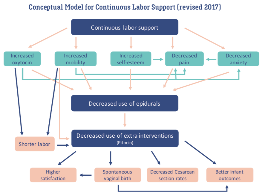 Evidence Based Birth Doula Conceptual Model Lamaze Healthy Birth Class