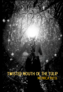 TwistedMouthCover.png