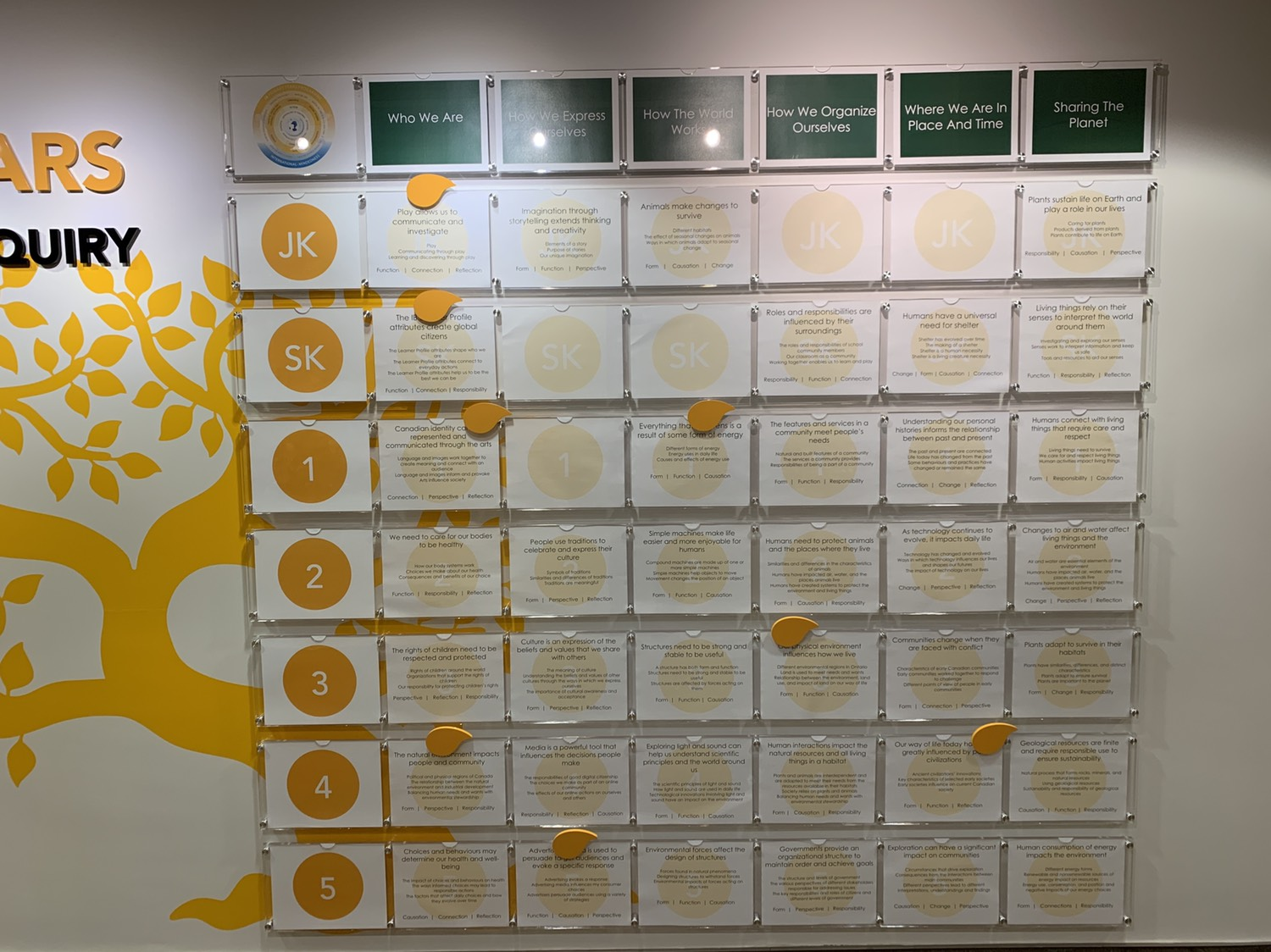 Our new Primary Years Programme of Inquiry Wall