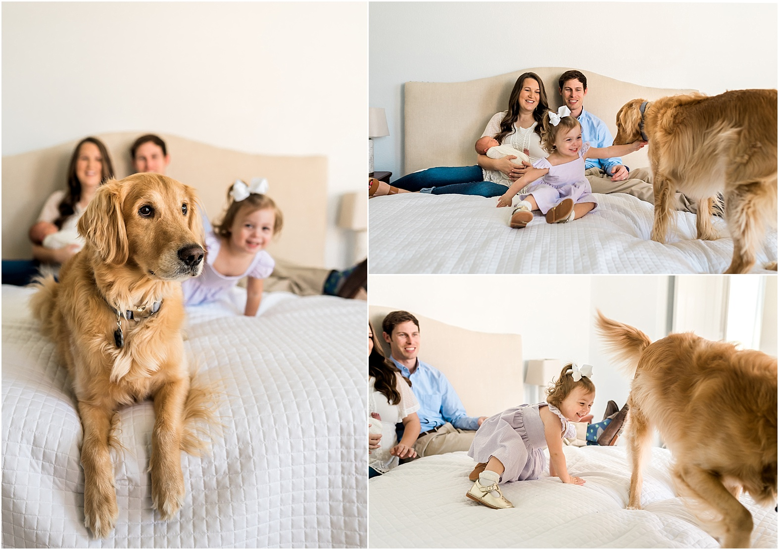 You now you've got the full family when the dog gets involved! This Katy, TX in home Newborn Lifestyle Session was full of fun, and a little mischief too featuring the furbaby of the house and brand new baby girl. | Houston, TX Newborn Lifestyle Photographer