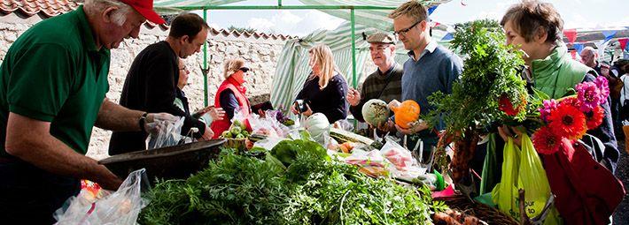 Local Farmers Market