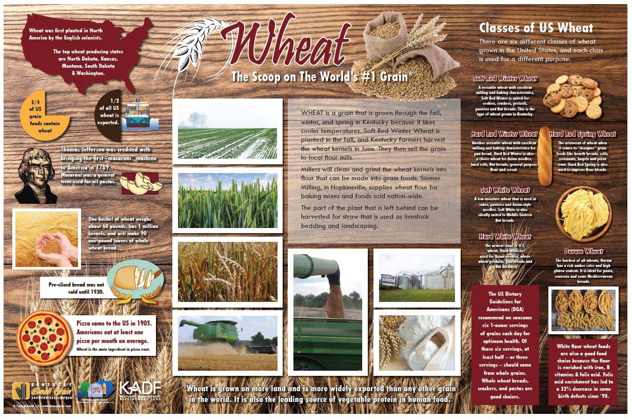 wheat poster.JPG