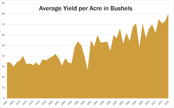 Kentucky average wheat yield over the past 50 years. Increases in average wheat yield have exceeded that of corn for the past 25 years.