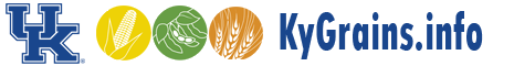 Latest Wheat Production & Marketing News