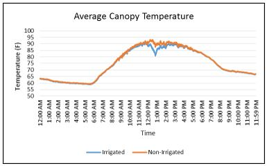 Figure 3. The average canopy temperature for the irrigated and non-irrigated treatments.