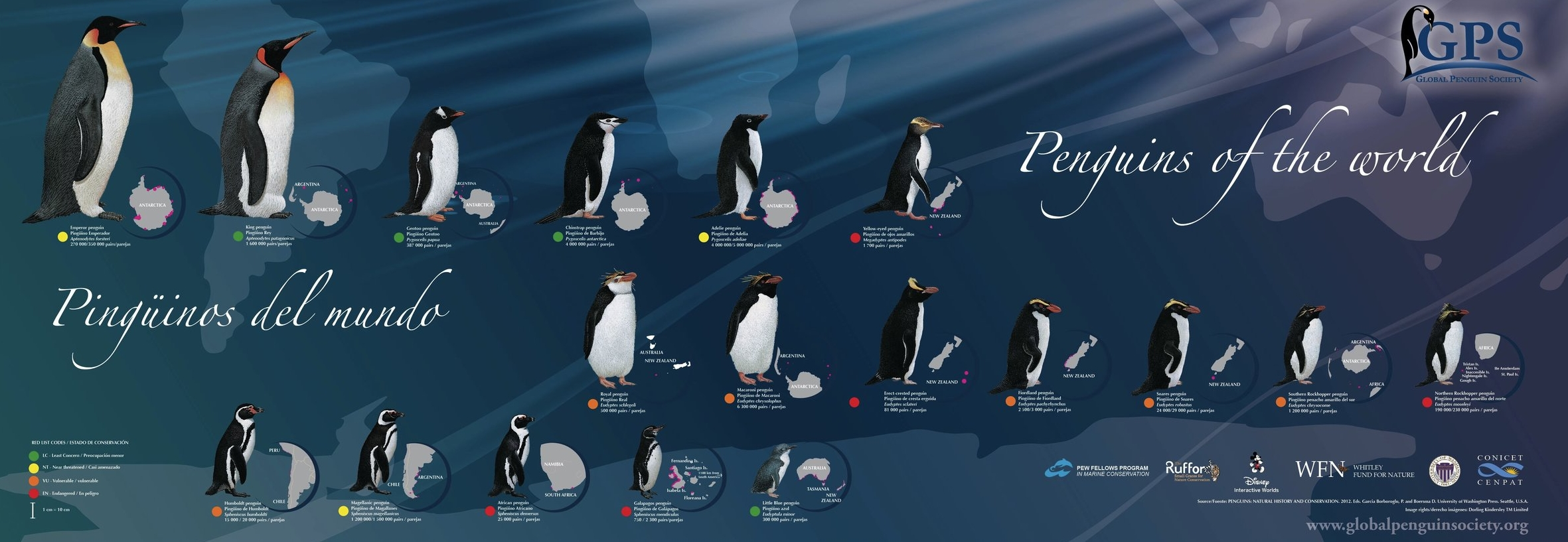 Poster penguins of the world GPS.jpg