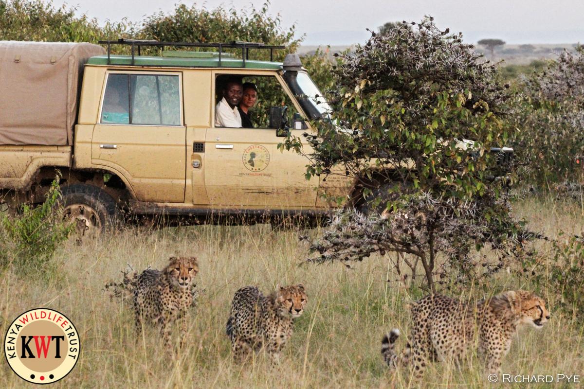 Mara Predator Conservation Programme.jpg
