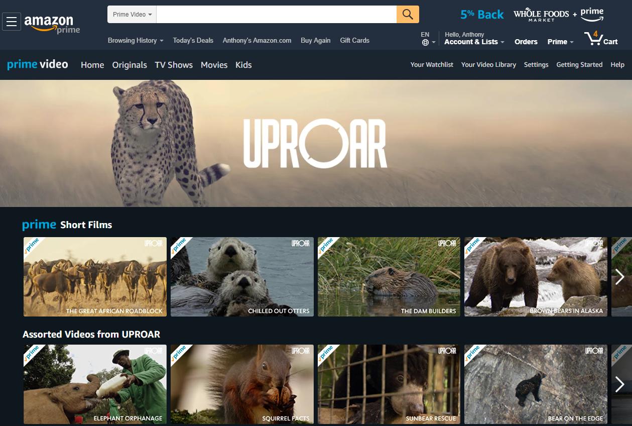 UPROAR Amazon landing page.png