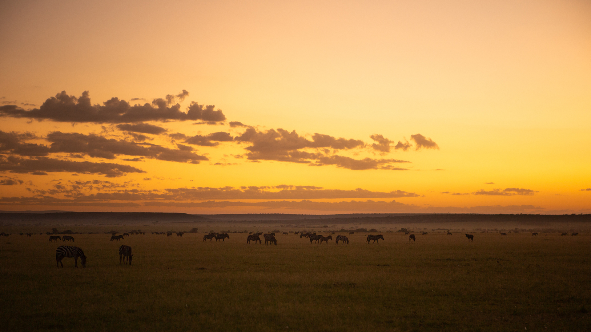 2019-great-plains-foundation-landscapes-1.jpg