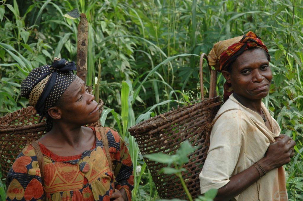 Pygmy-women-gather-products-in-the-forest-Cameroon-1024x681.jpg