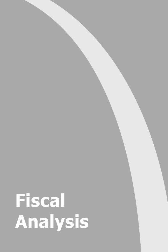 2019 Fiscal Analysis