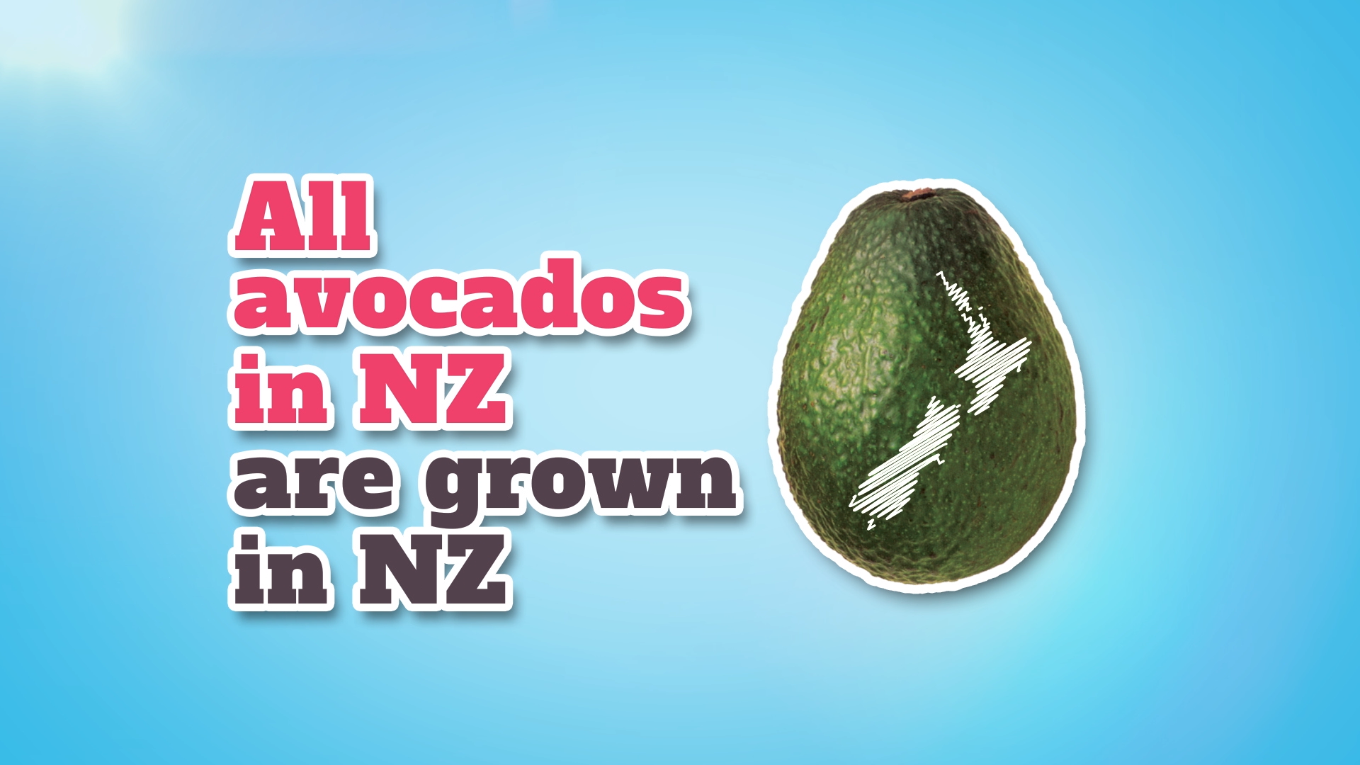 NZ Avocados 2.png