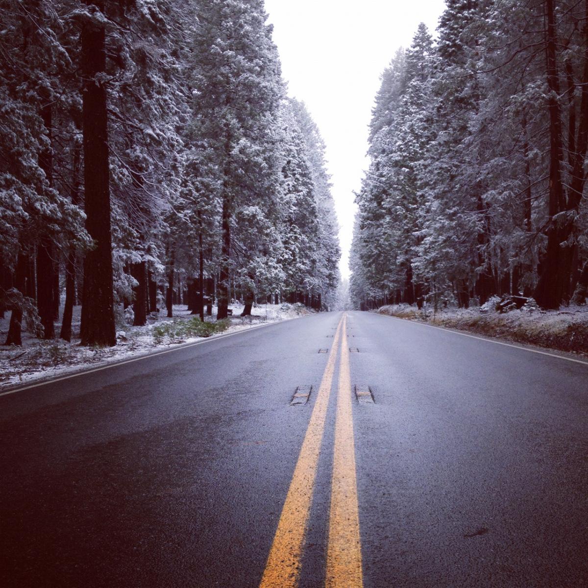 snowy-nc.jpg