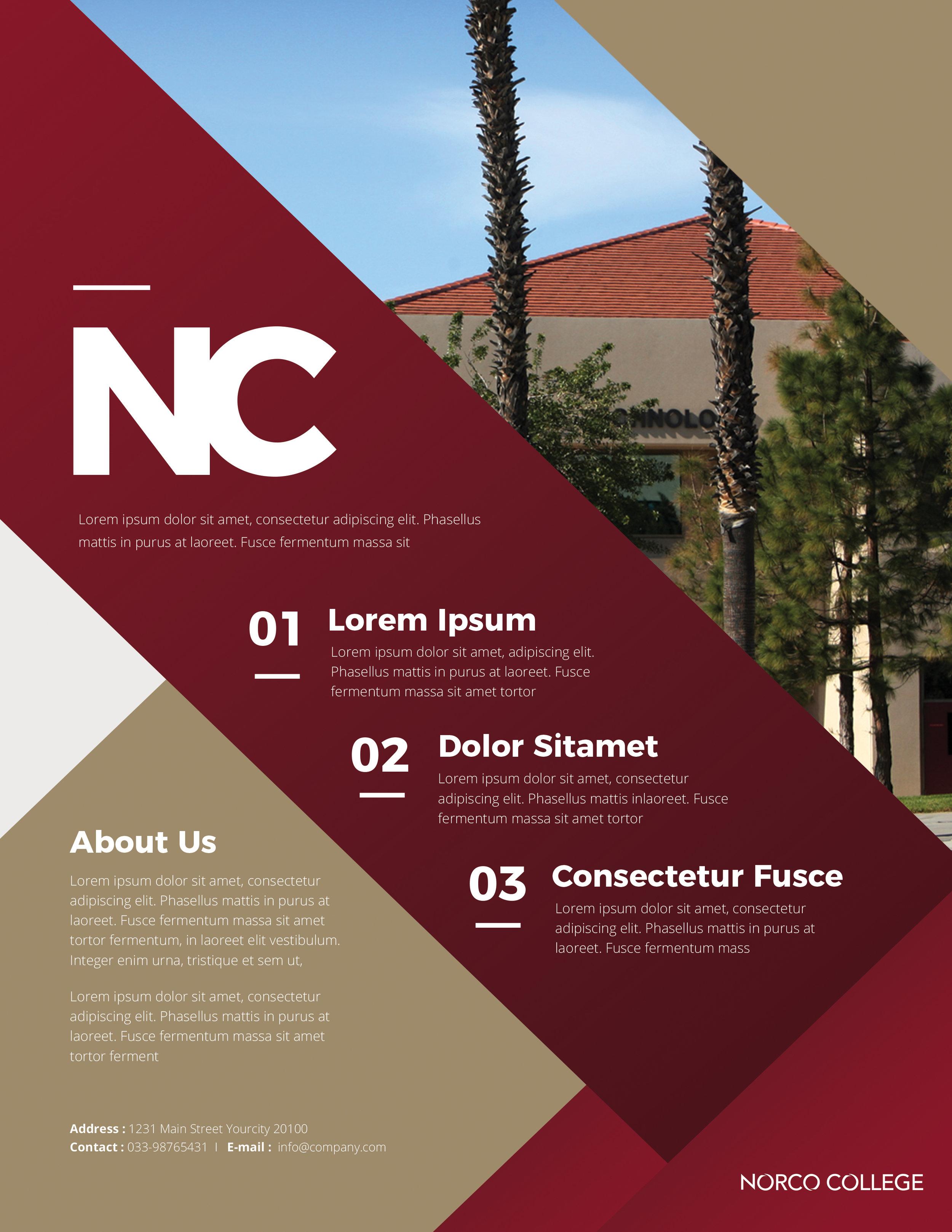NC Flyer Mock 1.jpg