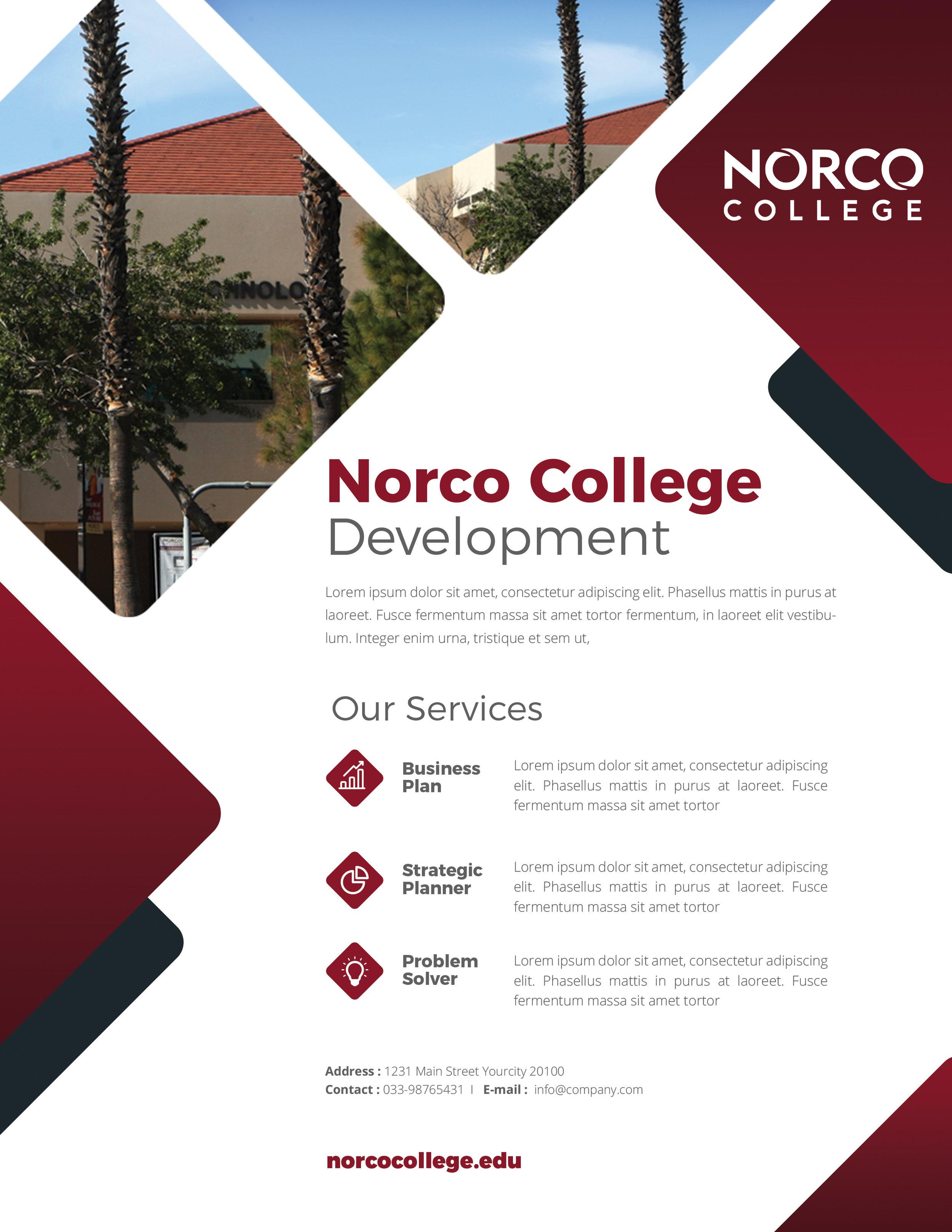 NC Flyer Mock 2.jpg