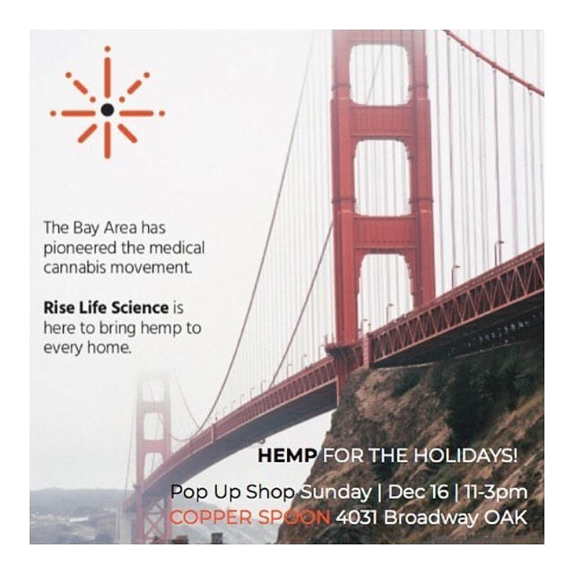 HEMP FOR THE HOLIDAYS 🌟 On Sunday we hosted a pop-up holiday marketplace with music, treats and our hemp CBD brands — everything you need for a happy healthy hempy holiday! 🎁 Cheers to @copperspoonoak @medicina @hellabreezy @ojodelasol @ire_irations @jboogie619 for creating the experience 🙌