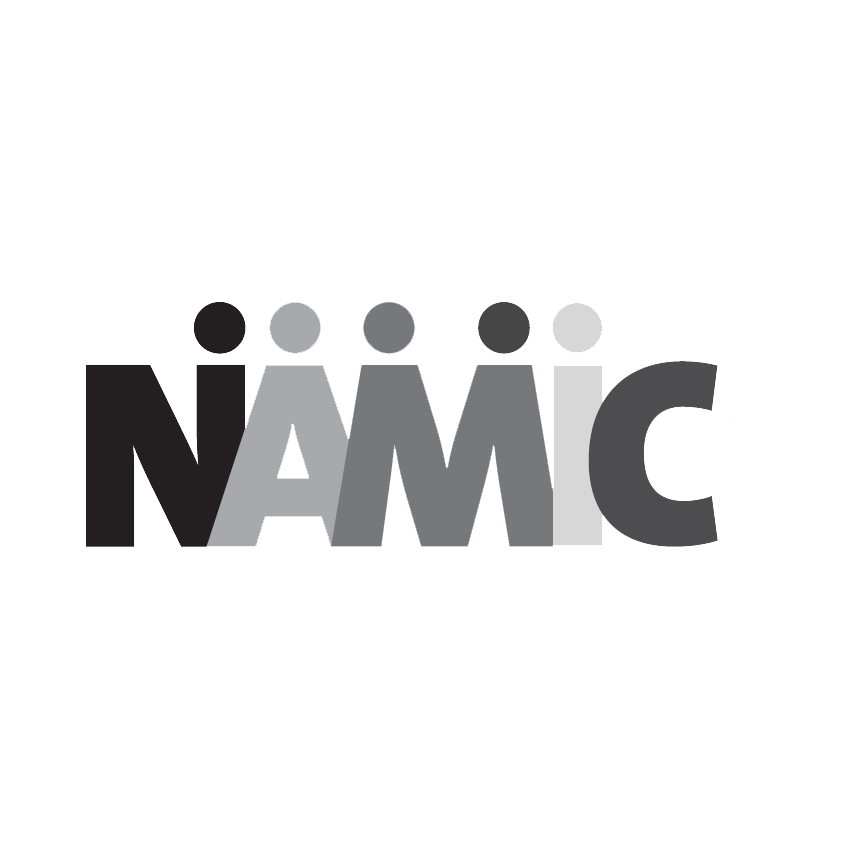NAMIC (National Association of Multi-ethnicity in Communications)