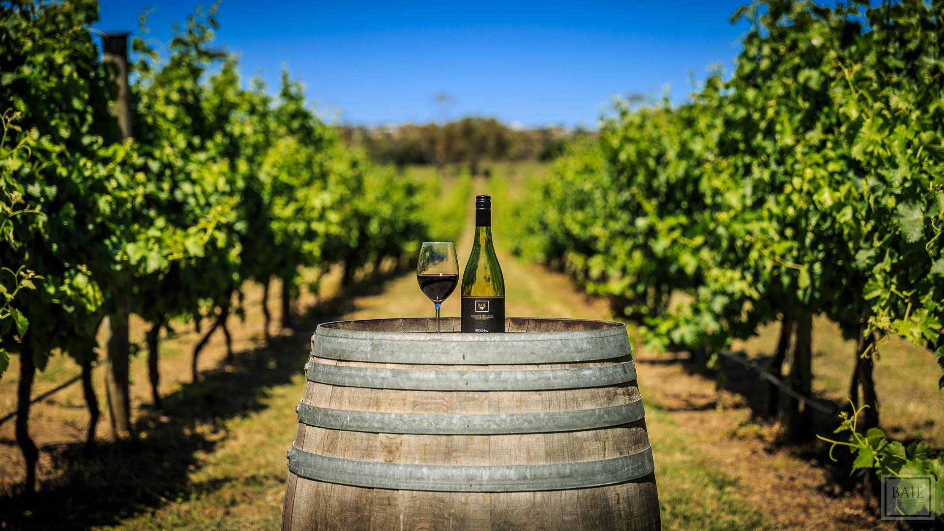 2014-12-17 - Baie Wines-1874.jpg