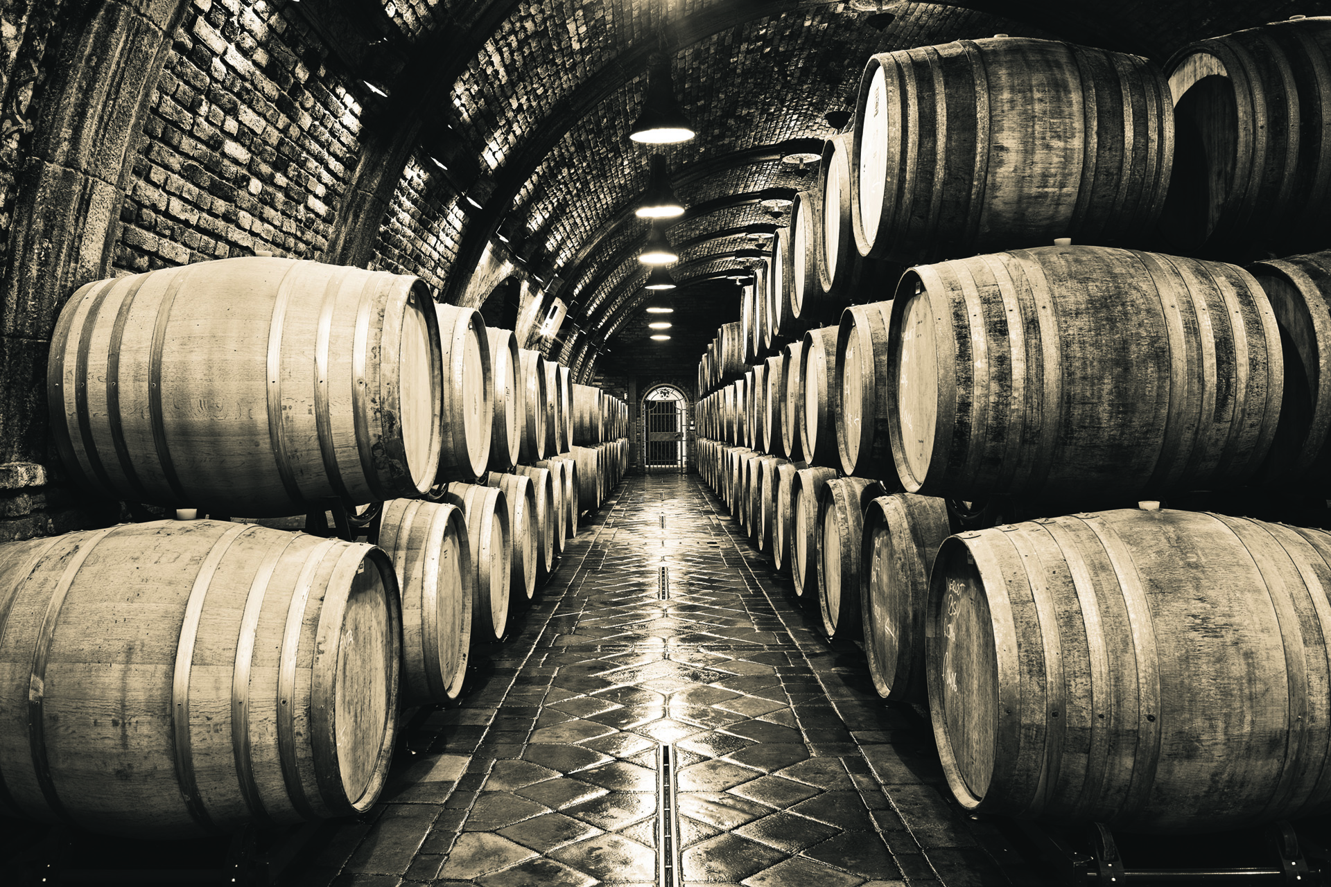 CHAS-190710-Wine Duotones APRROVED-v004-CB.jpg