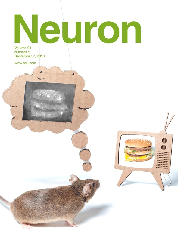 Neuron Cover 2016.jpg