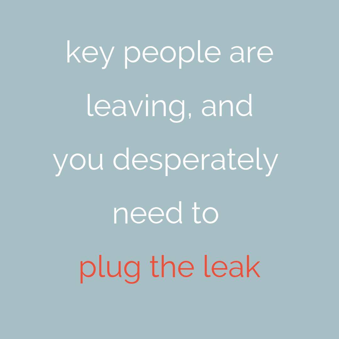 plug the leak.png