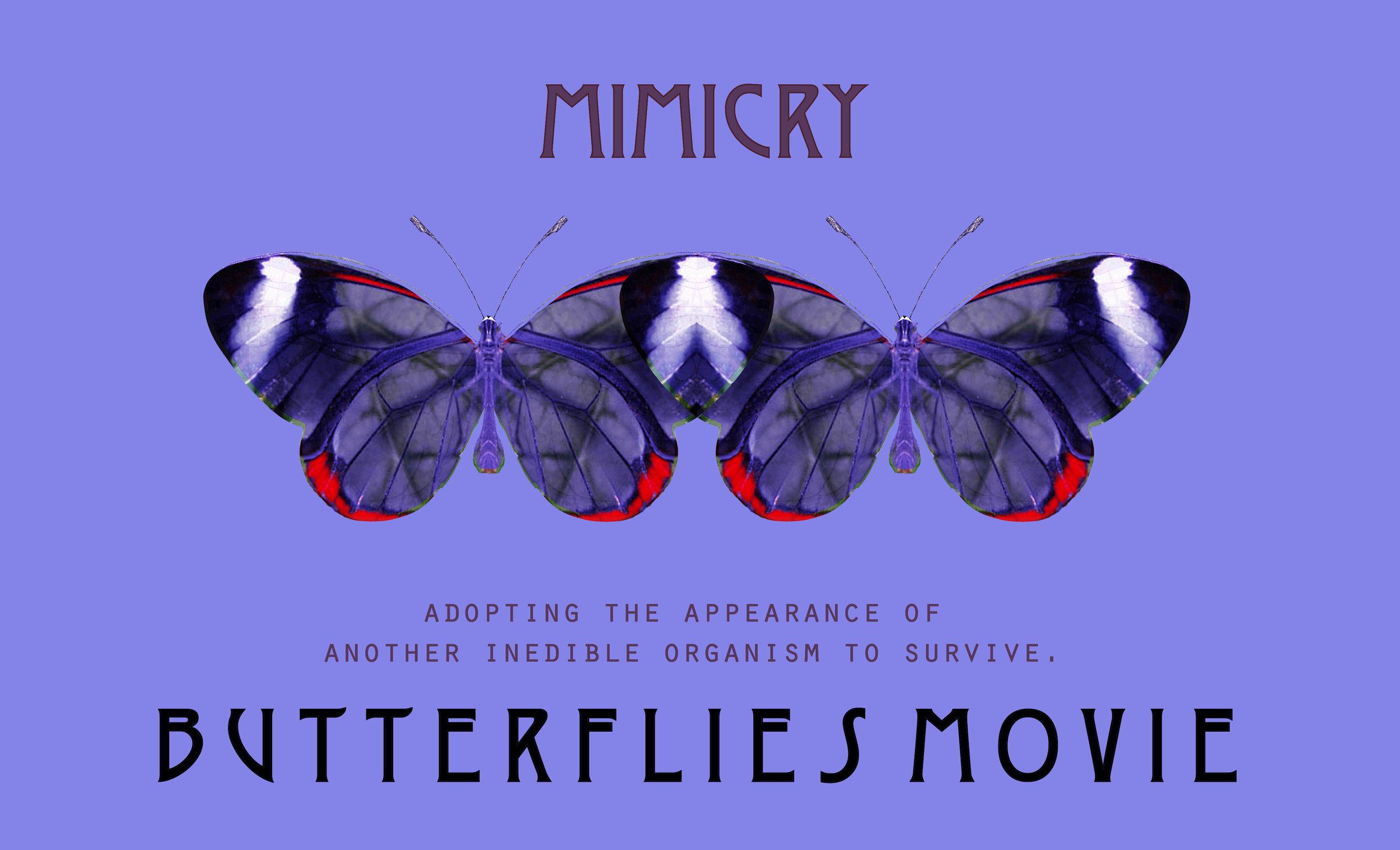 Mimicry4.jpg