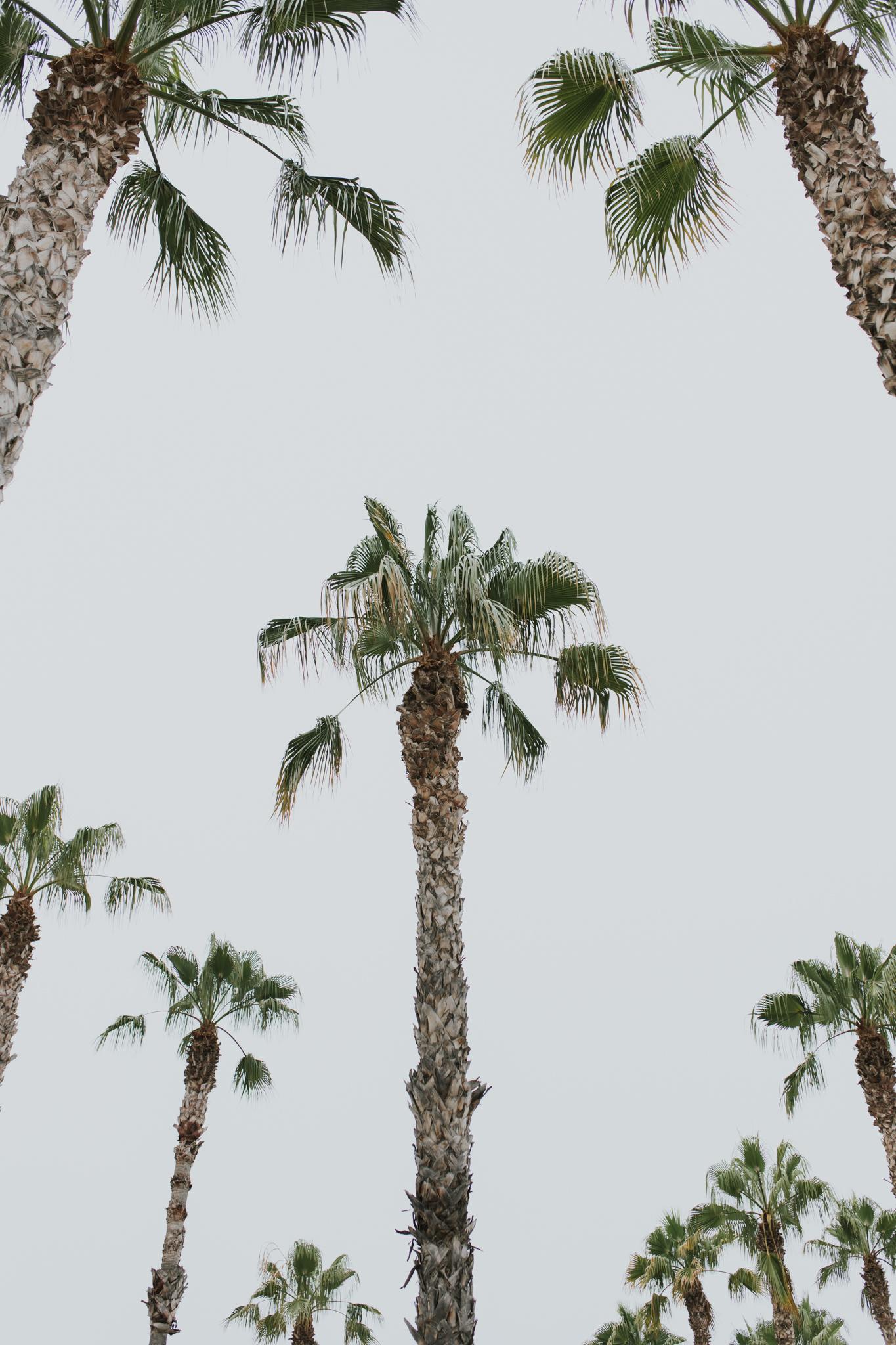 Natalie Skoric - Spain Travel Photography-14.jpg