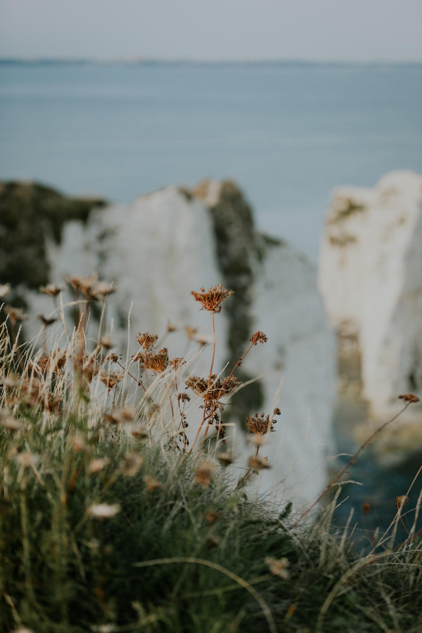 Natalie Skoric - England Travel Photography (123).jpg