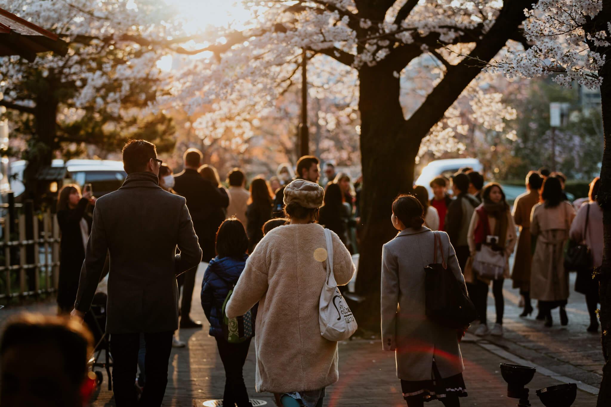 Japan-Travel-Photography-Natalie-Skoric-15.jpg